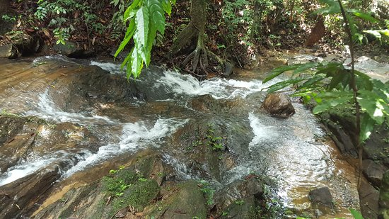 Ayagama, Sri Lanka: The stream