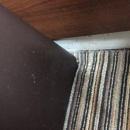 Rennie Mackintosh Art School Hotel: photo7.jpg