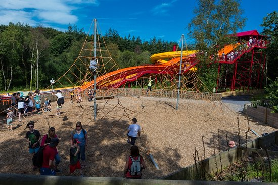 Y Felinheli, UK: SolarSplash and WildWEB