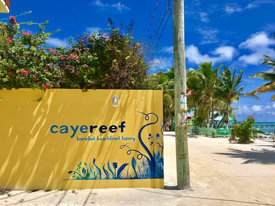 CayeReef Photo