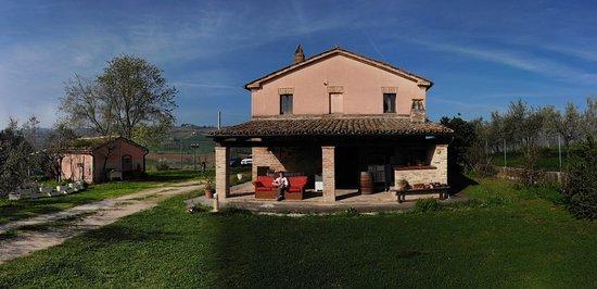 Serra de' Conti, Italien: Il patio dove abbiamo fatto colazione e pranzato e poi parte del giardino
