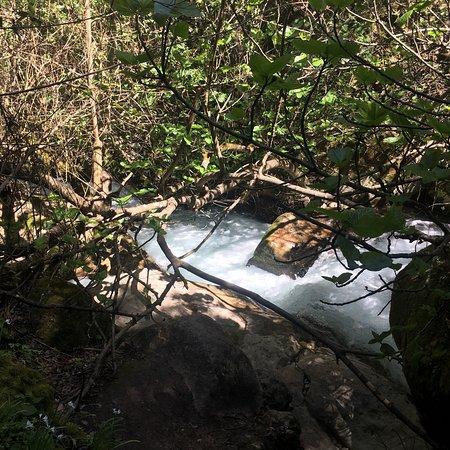 El Bosque, Espanha: photo0.jpg