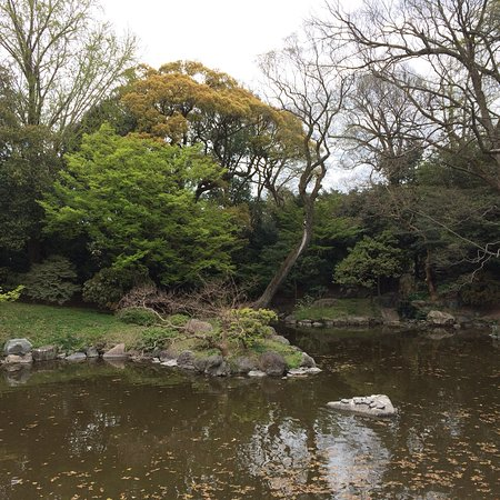 Kyoto Gyoen National Garden 2018 All You Need to Know Before You