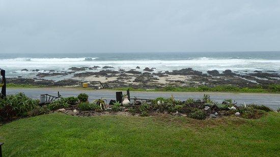Beachview Picture