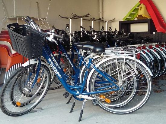 Motel Les Bleuets : Les vélos au couleur du motel!!