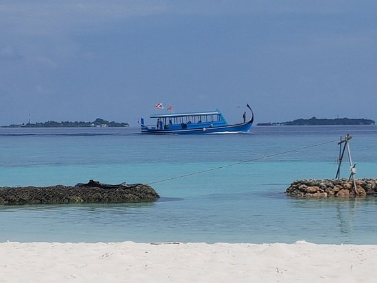 Gangehi Island Resort: The diving boat