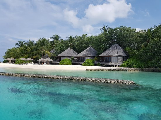 Gangehi Island Resort: Beach villas