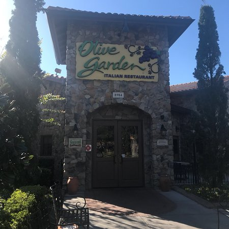 Chicken giardino picture of olive garden orlando - Olive garden locations in florida ...