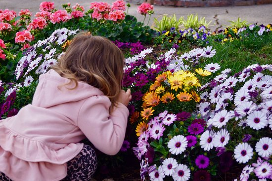Giardini di Augusto: Taking time to smell the flowers