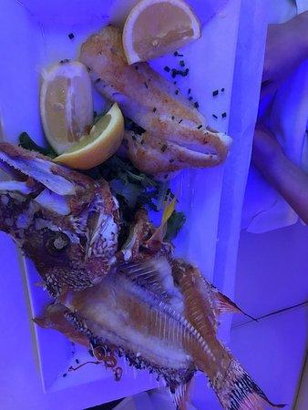 Fifi's Place Restaurant: Fresh Snapper