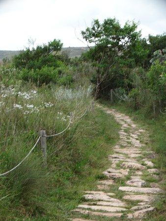 Rio São Francisco Spring : pequena trilha para a nascente do rio São Francisco