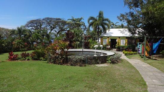 Romney Manor: jardim