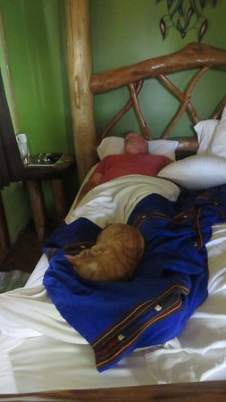 Tranquilseas Eco Lodge and Dive Center: Nothing like a good nap.