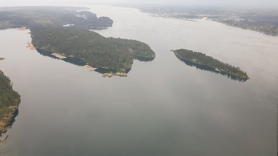 Campbell River, Canada: IMG_20180419_204233_005_large.jpg