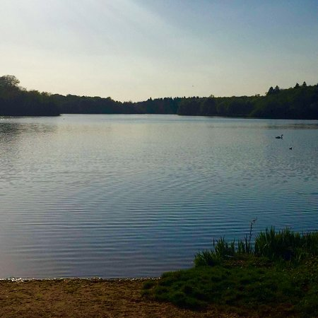 Virginia Water, UK: photo0.jpg