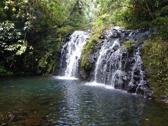 Puerto Viejo de Sarapiqui, Costa Rica: Ballades aux alentours de l'hotel