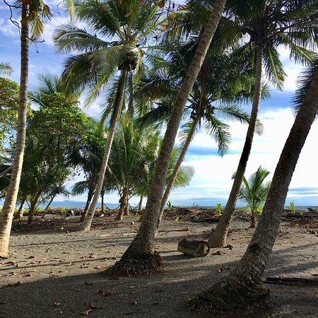 Playa Zancudo, Costa Rica: photo0.jpg