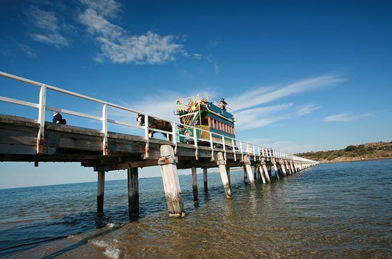 Fleurieu Peninsula: Full-Day Coastal Explorer Tour from Adelaide
