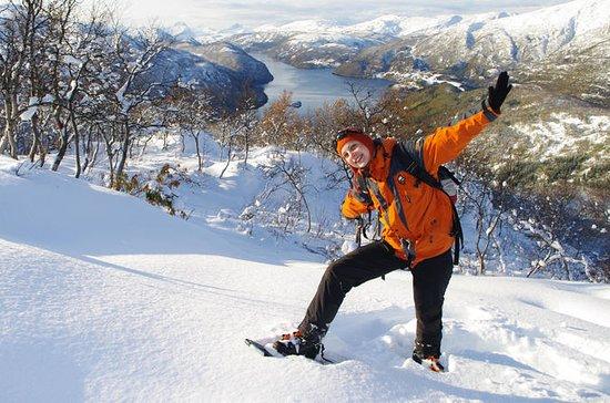 Snowshoeing Day Trip in Bodo...