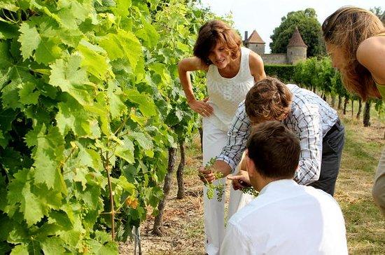 2 regiones vinícolas dentro de un...