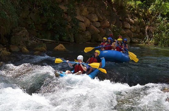 Jungle River Kayaking Adventure from...