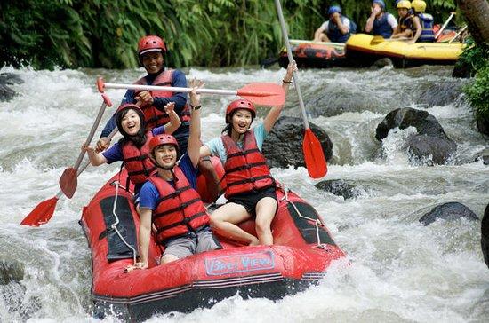Ayung River Rafting und Kintamani...