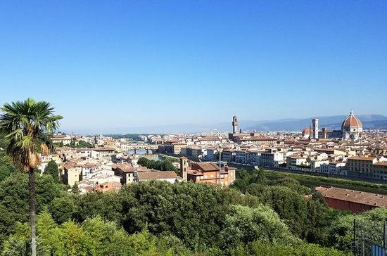 Private Day Trip from Livorno port to Florence and Pisa: Daytrip from Livorno port to Florence