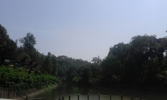 Kofiland Photo