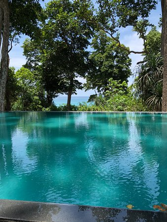 Taj Exotica Resort Spa Andamans Infinity Pool With Views Over The Ocean
