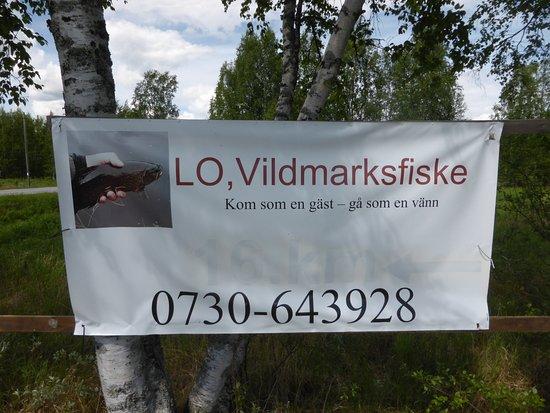 Dorotea, Sverige: Finns vid innfarten till stugan.