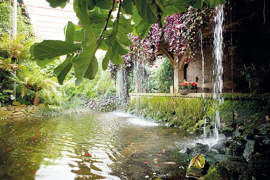 Emsbüren, Alemania: Tropische tuin