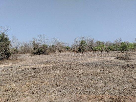 Benin: Parc National de la Pendjari