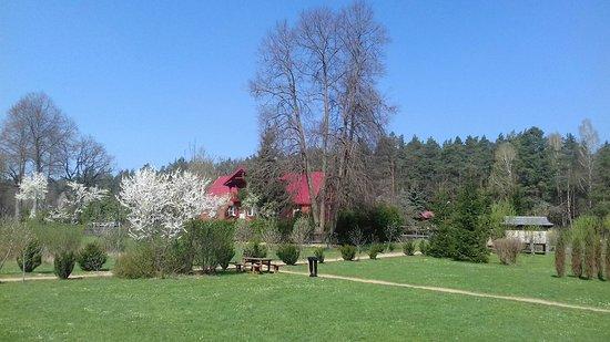 Forest Garden Silvarium