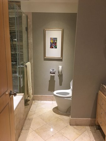 Hotel Mulia Senayan, Jakarta: Toilet
