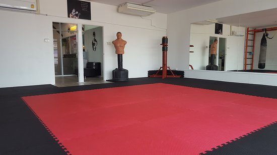BOB & Wing Chun Dummy - Picture of Core Combat Chiang Mai