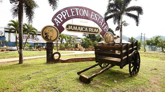 The Joy Spence Appleton Estate Rum Experience