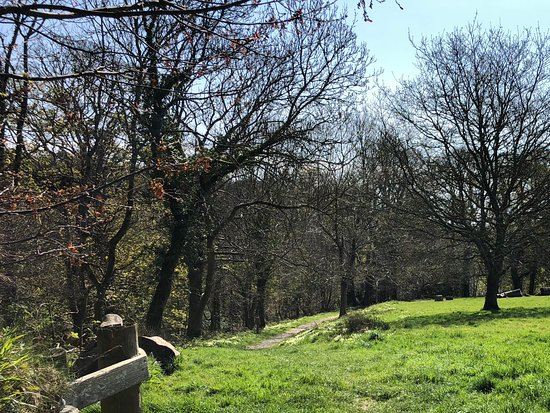 St Austell, UK: A walk along one of the Rides.