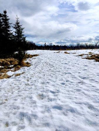 Fritz Creek, AK: Trail head from parking lot