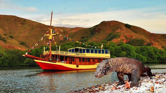 Boat charter Komodo Tours