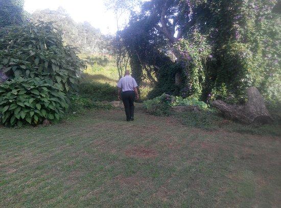 Juliasdale, Zimbabwe: Pinetree Inn larsh gardens