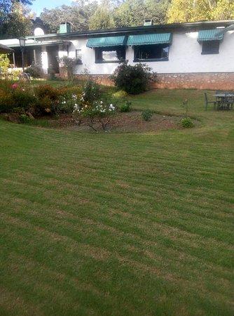 Juliasdale, Zimbabwe: garden at Pinetree Inn