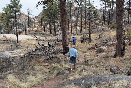 Granite Mountain Trail 261: Basin area. Would have been lush green grass if winter rains had fallen.