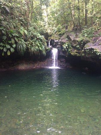 Vieux-Habitants, Guadalupe: bassin et chute