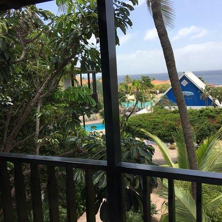 Lions Dive & Beach Resort Curacao: photo5.jpg
