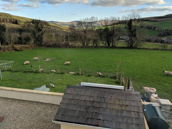 Macreddin Village, أيرلندا: MVIMG_20180420_184816_large.jpg