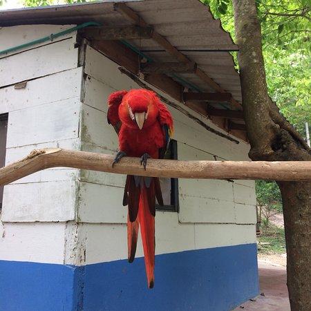 Turbaco, Colombia: photo4.jpg