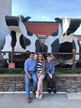 Best Restaurants In Ashe County Nc
