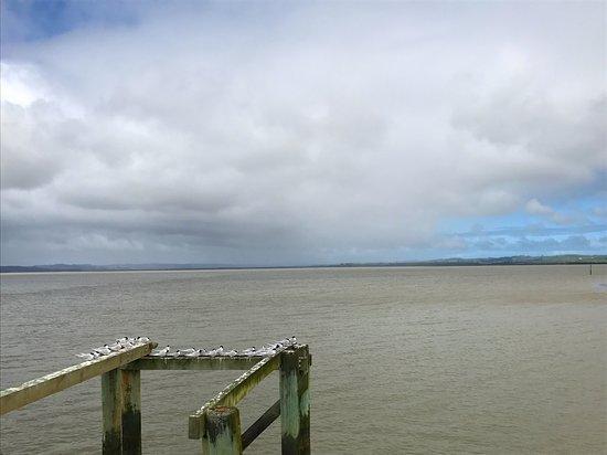 Helensville, Νέα Ζηλανδία: The Jetty Shelly Beach