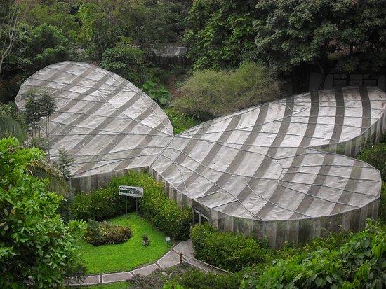 Jardin Botanico del Quindio: Jardín botánico y mariposario