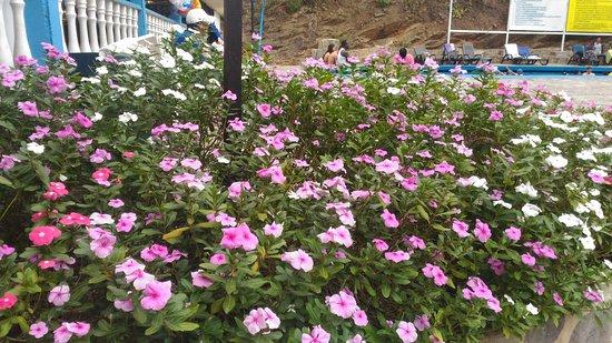 Tibirita, Colombia: Paraíso termal